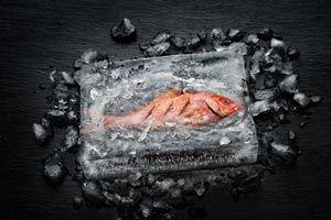 Fischzubereitung mit dem Miele Dialoggarer
